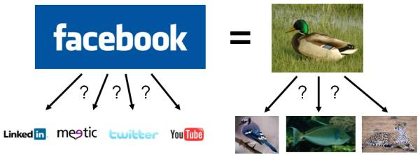 facebook-canard
