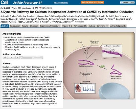 CellPrototype