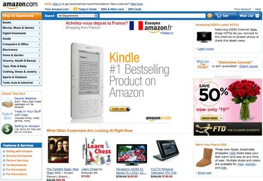 Amazon-2010
