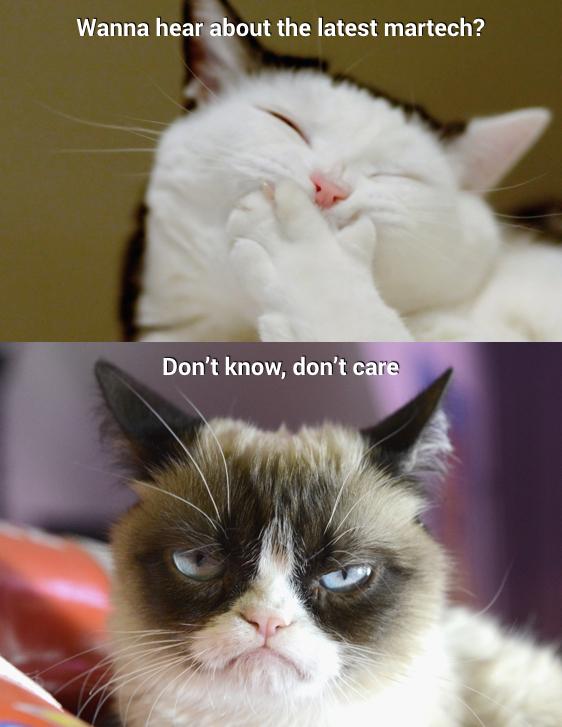 LGcats.jpeg