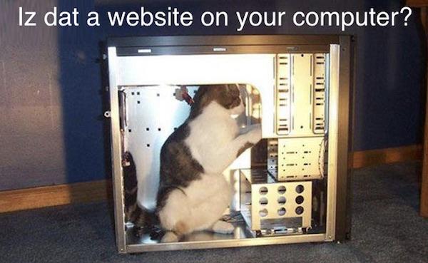 lolcat-computer
