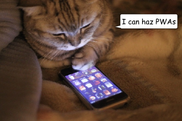 LOLcat-smartphone.jpg
