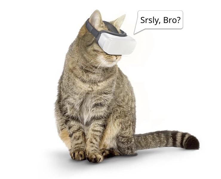 Cat-VR